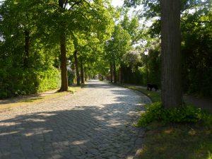 lindenstraße-2